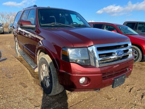 2012 Ford Expedition for sale at RDJ Auto Sales in Kerkhoven MN