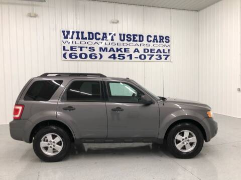 2010 Ford Escape for sale at Wildcat Used Cars in Somerset KY