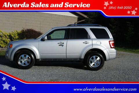 2009 Ford Escape for sale at Alverda Sales and Service in Alverda PA