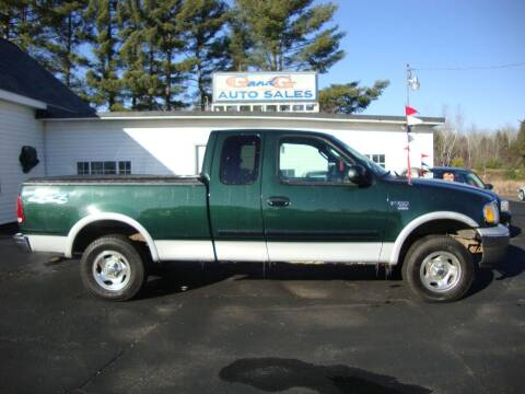 2003 Ford F-150 for sale at G and G AUTO SALES in Merrill WI