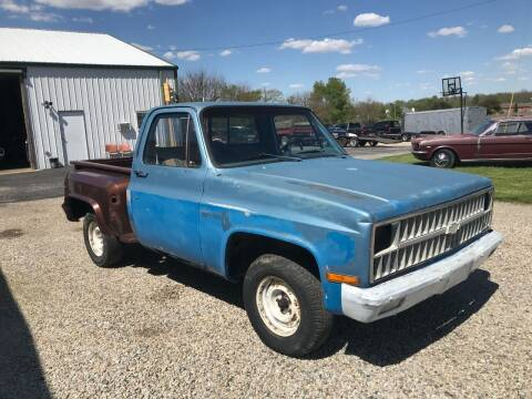 1981 Chevrolet C/K 10 Series for sale at 500 CLASSIC AUTO SALES in Knightstown IN