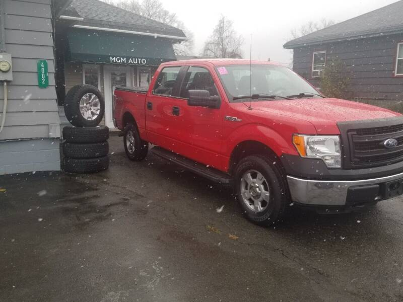 2014 Ford F-150 for sale at MGM Auto Sales in Cortland NY