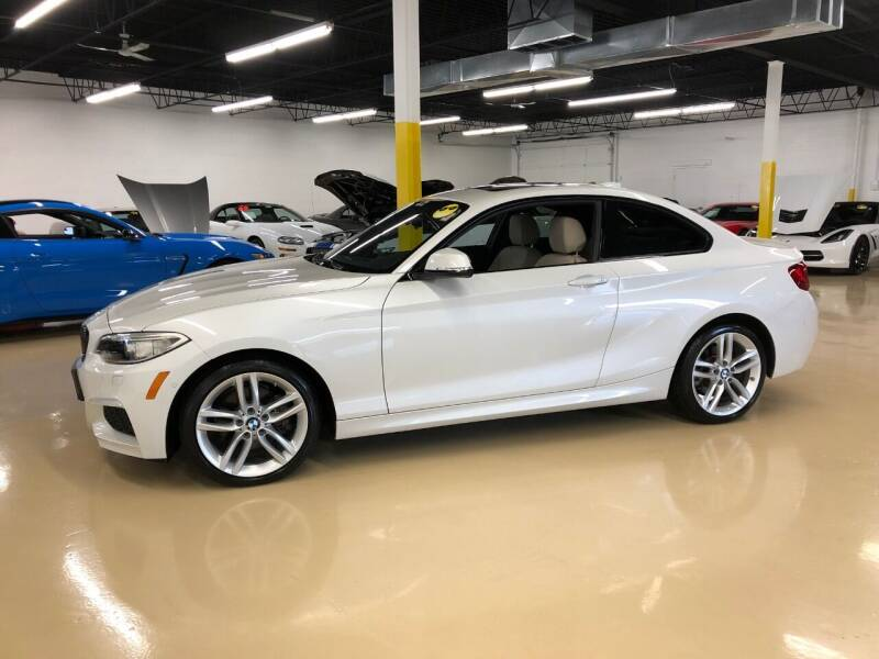 2015 BMW 2 Series for sale at Fox Valley Motorworks in Lake In The Hills IL