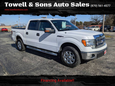 2014 Ford F-150 for sale at Towell & Sons Auto Sales in Manila AR