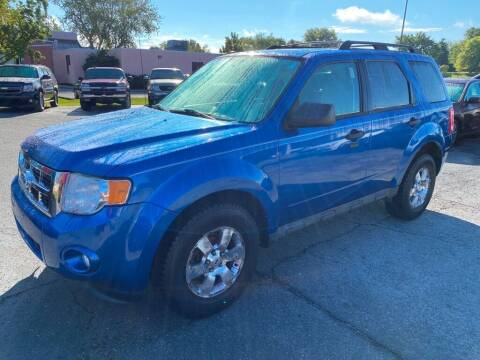 2011 Ford Escape for sale at Lakeshore Auto Wholesalers in Amherst OH