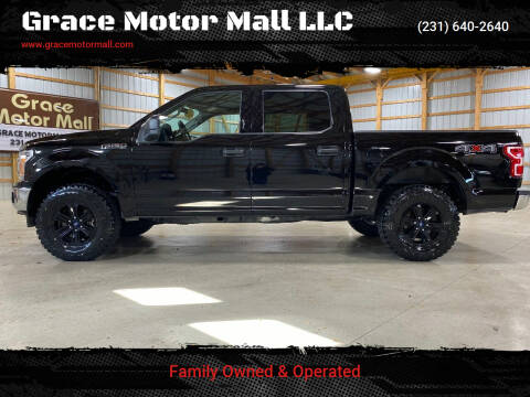 2018 Ford F-150 for sale at Grace Motor Mall LLC in Traverse City MI
