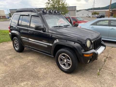 2004 Jeep Liberty for sale at All American Autos in Kingsport TN