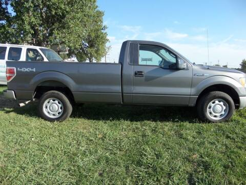 2010 Ford F-150 for sale at AUTO FLEET REMARKETING, INC. in Van Alstyne TX