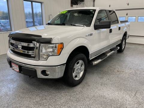 2013 Ford F-150 for sale at Sand's Auto Sales in Cambridge MN