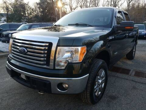 2012 Ford F-150 for sale at AMA Auto Sales LLC in Ringwood NJ