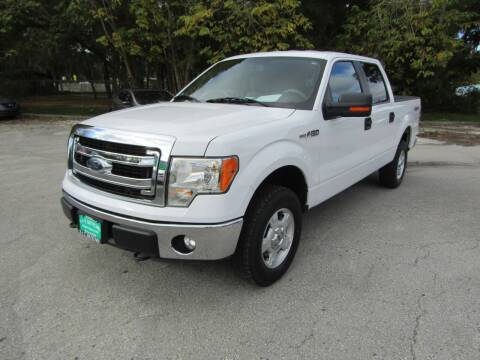 2014 Ford F-150 for sale at S & T Motors in Hernando FL
