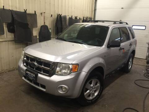 2008 Ford Escape for sale at Lewis Blvd Auto Sales in Sioux City IA