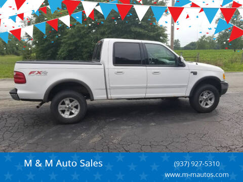 2002 Ford F-150 for sale at M & M Auto Sales in Hillsboro OH
