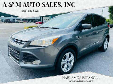 2014 Ford Escape for sale at A & M Auto Sales, Inc in Alabaster AL
