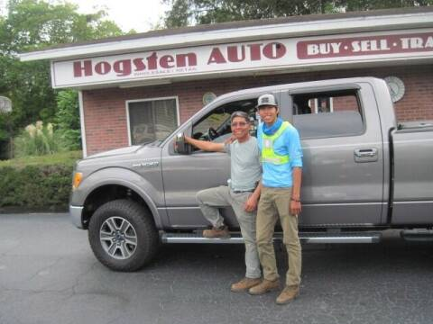 2012 Ford F-150 for sale at HOGSTEN AUTO WHOLESALE in Ocala FL
