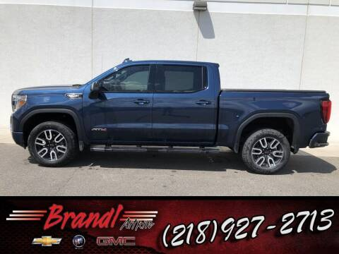 2019 GMC Sierra 1500 for sale at Brandl GM in Aitkin MN