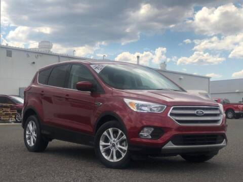 2019 Ford Escape for sale at Rocky Mountain Commercial Trucks in Casper WY