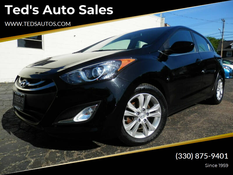 2013 Hyundai Elantra GT for sale at Ted's Auto Sales in Louisville OH