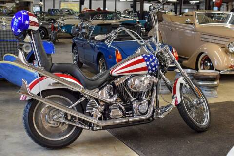 2001 Harley-Davidson Softail for sale at Hooked On Classics in Watertown MN
