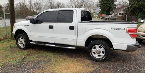 2010 Ford F-150 for sale at Mama's Motors in Greer SC