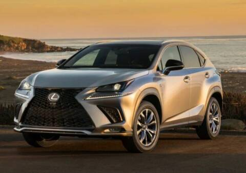 2021 Lexus NX 300 for sale at Diamante Leasing in Brooklyn NY