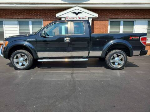 2012 Ford F-150 for sale at UPSTATE AUTO INC in Germantown NY