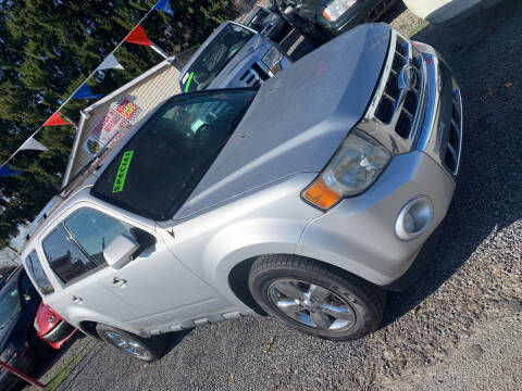 2010 Ford Escape for sale at Trocci's Auto Sales in West Pittsburg PA