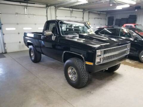 1983 Chevrolet C/K 10 Series for sale at Classic Car Deals in Cadillac MI
