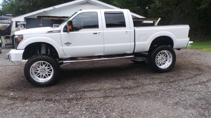 2014 Ford F-250 Super Duty for sale at action auto wholesale llc in Lillian AL