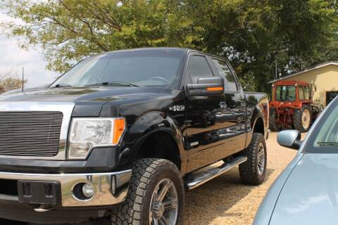 2013 Ford F-150 for sale at Abc Quality Used Cars in Canton TX