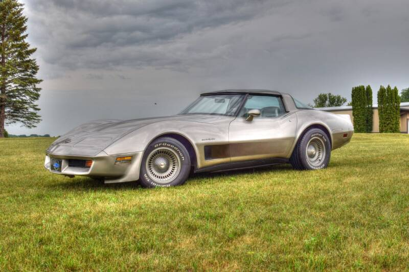1982 Chevrolet Corvette for sale at Hooked On Classics in Watertown MN