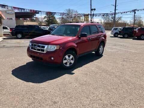2010 Ford Escape for sale at ALBUQUERQUE AUTO OUTLET in Albuquerque NM