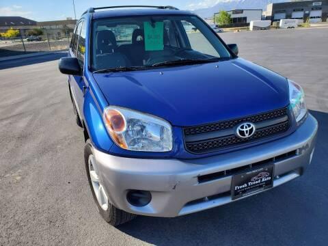 2004 Toyota RAV4 for sale at FRESH TREAD AUTO LLC in Springville UT
