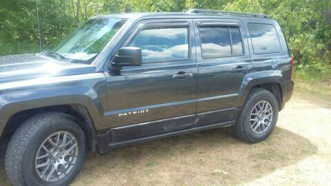 2014 Jeep Patriot for sale at Expressway Auto Auction in Howard City MI