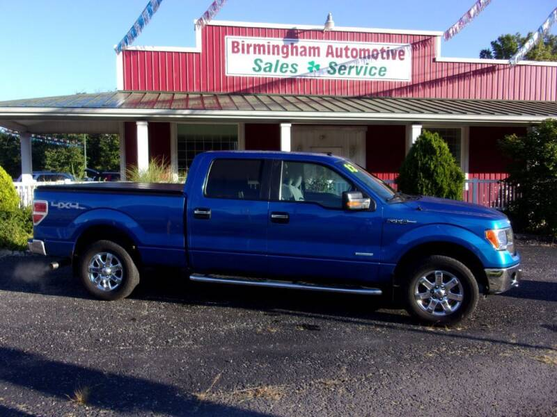 2013 Ford F-150 for sale at Birmingham Automotive in Birmingham OH
