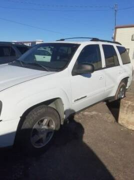 2004 Chevrolet TrailBlazer for sale at Potter Motors Conway in Conway AR