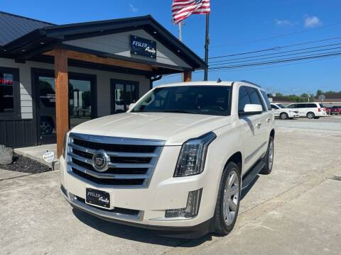 2015 Cadillac Escalade for sale at Fesler Auto in Pendleton IN