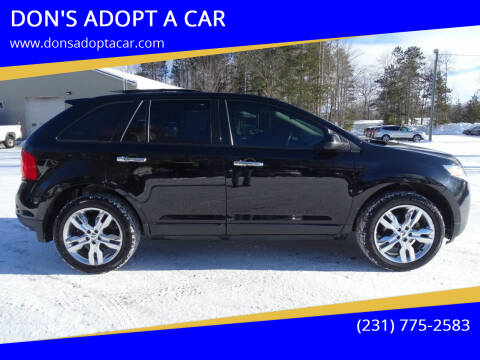 2011 Ford Edge for sale at DON'S ADOPT A CAR in Cadillac MI