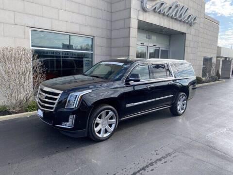 2017 Cadillac Escalade ESV for sale at Cappellino Cadillac in Williamsville NY