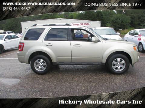 2011 Ford Escape for sale at Hickory Wholesale Cars Inc in Newton NC