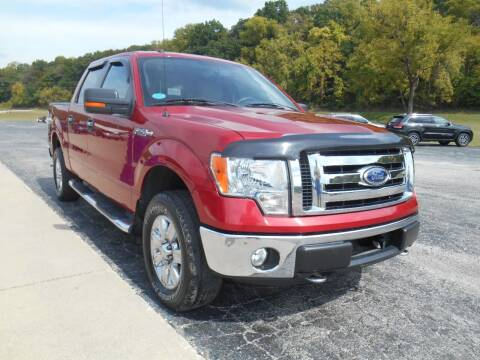 2009 Ford F-150 for sale at Maczuk Automotive Group in Hermann MO