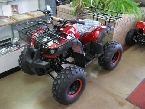 2020 Icebear ATV 125 for sale at Arnold Motor Company in Houston PA