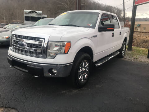 2014 Ford F-150 for sale at PIONEER USED AUTOS & RV SALES in Lavalette WV