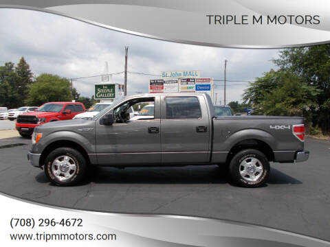2014 Ford F-150 for sale at Triple M Motors in Saint John IN