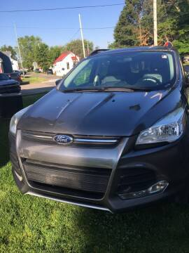 2014 Ford Escape for sale at Carlisle Cars in Chillicothe OH