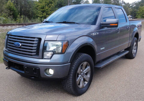 2011 Ford F-150 for sale at JACKSON LEASE SALES & RENTALS in Jackson MS