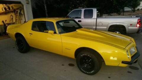 1974 Pontiac Firebird for sale at Classic Car Deals in Cadillac MI
