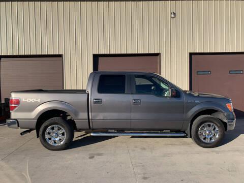 2010 Ford F-150 for sale at Dakota Auto Inc. in Dakota City NE