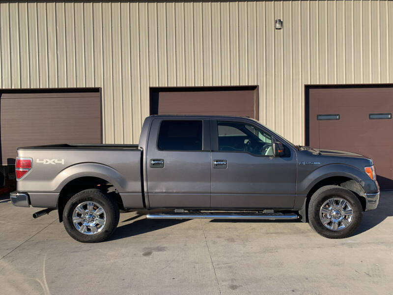 2010 Ford F-150 for sale at Dakota Auto Inc. in Dakota City NE