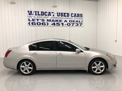 2005 Nissan Maxima for sale at Wildcat Used Cars in Somerset KY